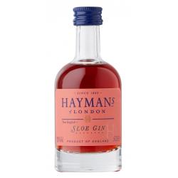 Haymans Sloe Gin 0,05 Liter