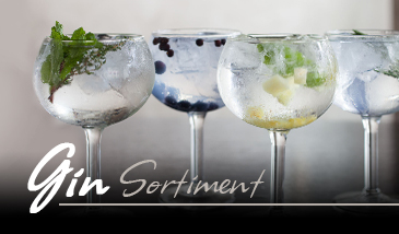 Gin Sortiment